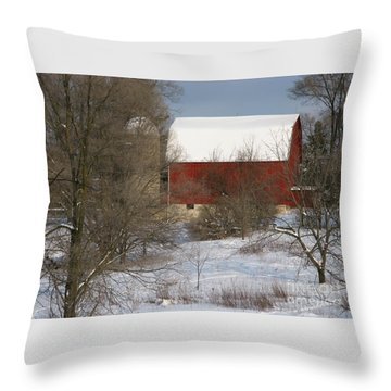 Throw Pillow featuring the photograph Country Winter by Ann Horn