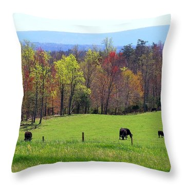 Throw Pillow featuring the photograph Countryside In Spring by Kathryn Meyer