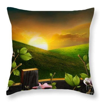 Countryside Sunset Throw Pillow by Peter Awax