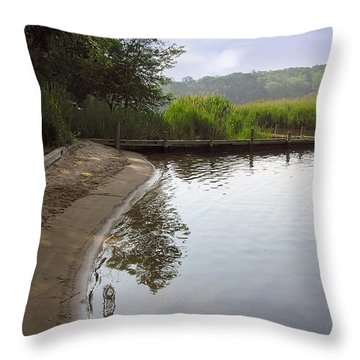 Cove Throw Pillow by Brian Wallace