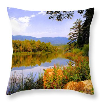 Cove Lake State Park  Throw Pillow by Frozen in Time Fine Art Photography