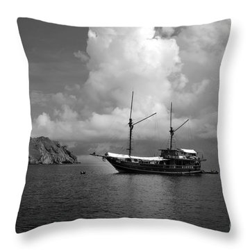 Throw Pillow featuring the photograph Cove  by Sergey Lukashin