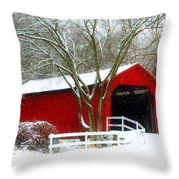 Cover Bridge Beauty Throw Pillow
