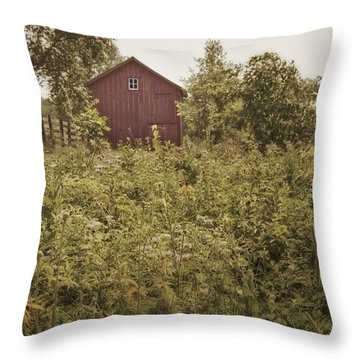 Covered Barn Throw Pillow by Margie Hurwich