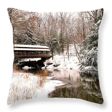 Covered In Snow Throw Pillow