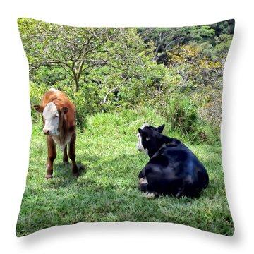 Throw Pillow featuring the photograph Cow 4 by Dawn Eshelman