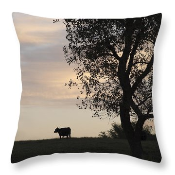 Cow At Last Light Throw Pillow