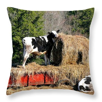 Cow Country Buffet Throw Pillow by Christina Rollo