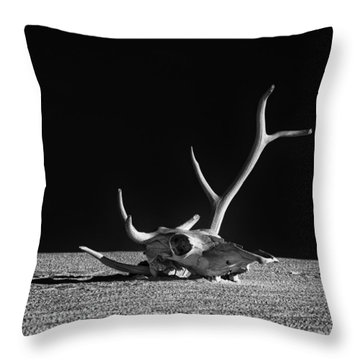 Cow Skull And Antlers Throw Pillow