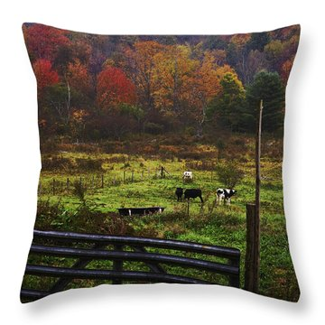 Throw Pillow featuring the photograph Cow Pasture In Autumn by Debra Fedchin