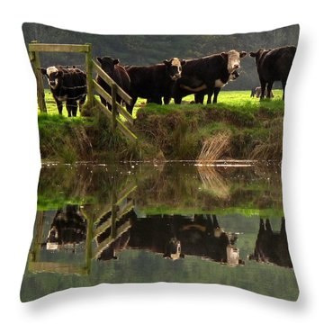 Cow Reflections Throw Pillow