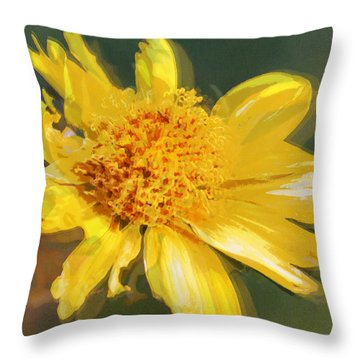 Cowpen Daisy No. 4 Throw Pillow
