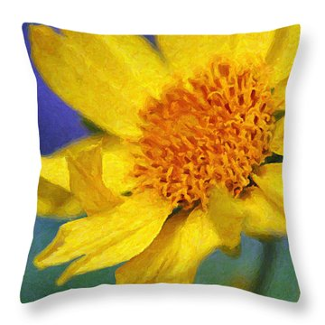 Cowpen Daisy No. 5 Throw Pillow
