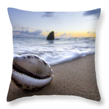 Sea Shell Throw Pillows