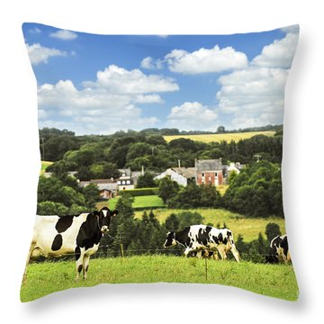 Cows In A Pasture In Brittany Throw Pillow