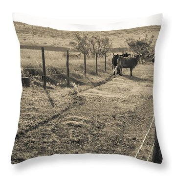 Cows In The Lane Throw Pillow