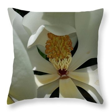 Coy Magnolia Throw Pillow