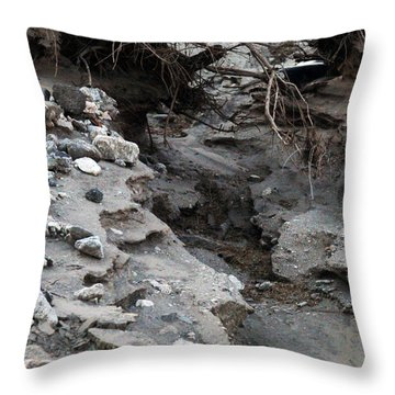 Throw Pillow featuring the sculpture Coyote Alley by Dan Redmon
