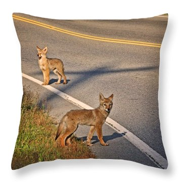 Throw Pillow featuring the photograph Coyotes At The Crossroads by Peggy Collins
