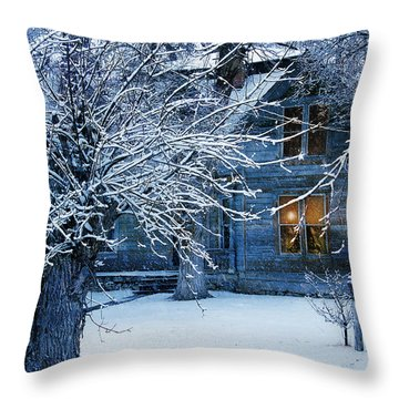 Throw Pillow featuring the photograph Cozy by Gunter Nezhoda