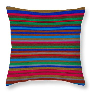 Cp039 Throw Pillow by David K Small