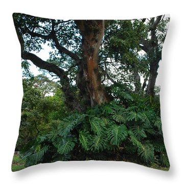 CR Throw Pillow