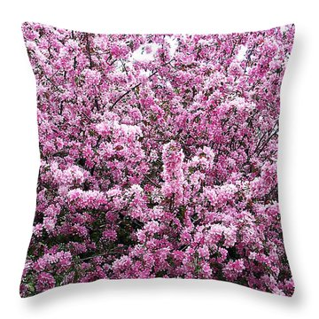 Crab Apple Tree Throw Pillow