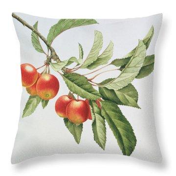 Crab Apples Throw Pillow by Sally Crosthwaite