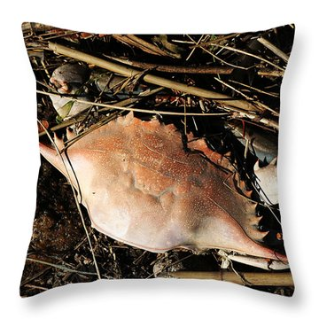 Throw Pillow featuring the photograph Crab Shell by William Selander