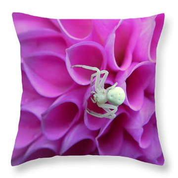 Crab Spider And Dahlia Throw Pillow