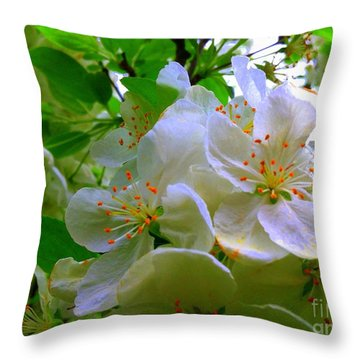 Crabapple Beauty Throw Pillow