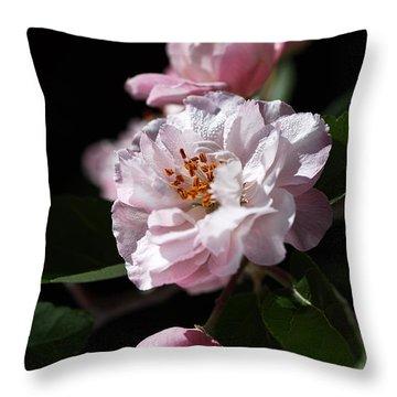 Crabapple Flowers Throw Pillow