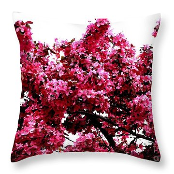 Crabapple Tree Blossoms Throw Pillow by Rose Santuci-Sofranko