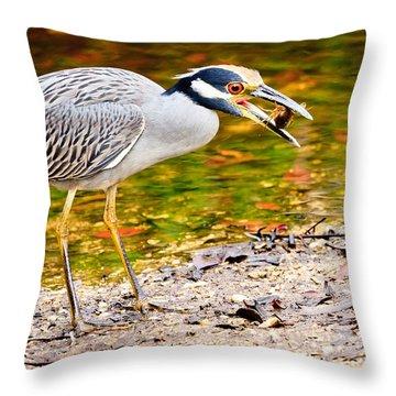 Crabbing In Florida Throw Pillow