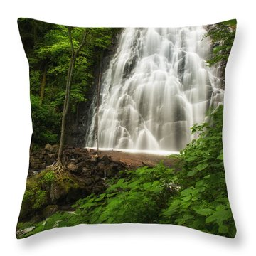 Crabtree Falls Throw Pillow