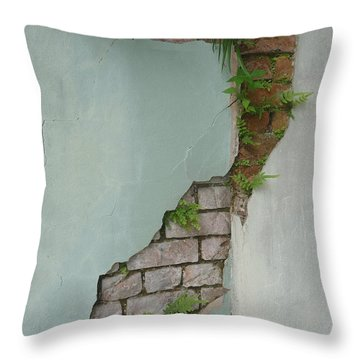 Cracked Throw Pillow by Valerie Reeves