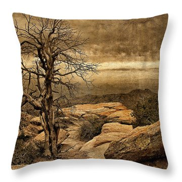 Crags And Crooks I Throw Pillow