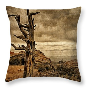 Crags And Crooks II Throw Pillow