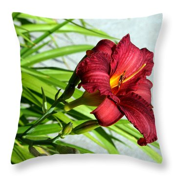 Cranberry Colored Lily Throw Pillow by Kay Novy