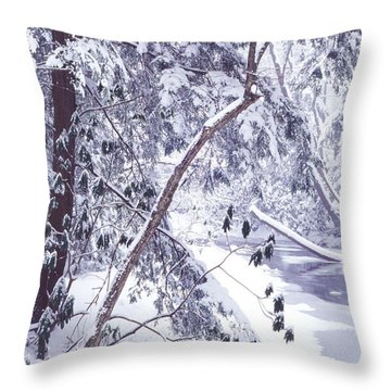Cranberry River Deep Snow Throw Pillow by Thomas R Fletcher