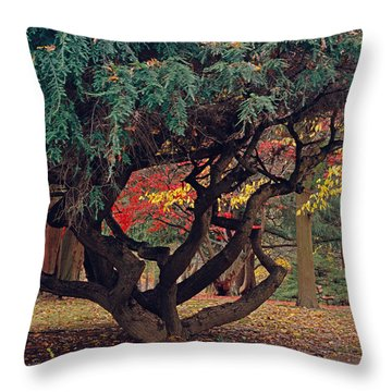 Cranbury Monkey Puzzle Throw Pillow