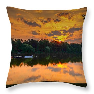 Crane @ Sunrise Throw Pillow