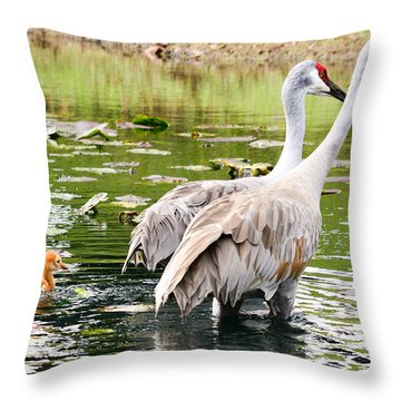 Crane Family Goes For A Swim Throw Pillow