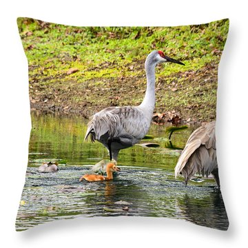 Crane Family Swim II Throw Pillow