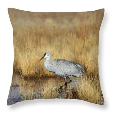 Throw Pillow featuring the photograph  Solitary Crane In The Field by Ruth Jolly