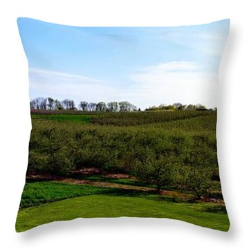 Crane Orchards Throw Pillow by Michelle Calkins