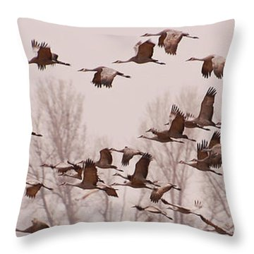 Throw Pillow featuring the photograph Cranes Across The Sky by Don Schwartz