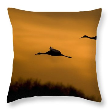 Cranes At Sunset Throw Pillow
