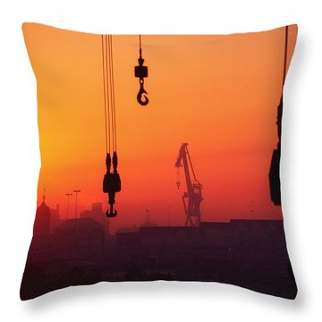 Cranes At Sunset Throw Pillow by The Irish Image Collection