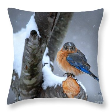 Cranky Can Be Cute Throw Pillow